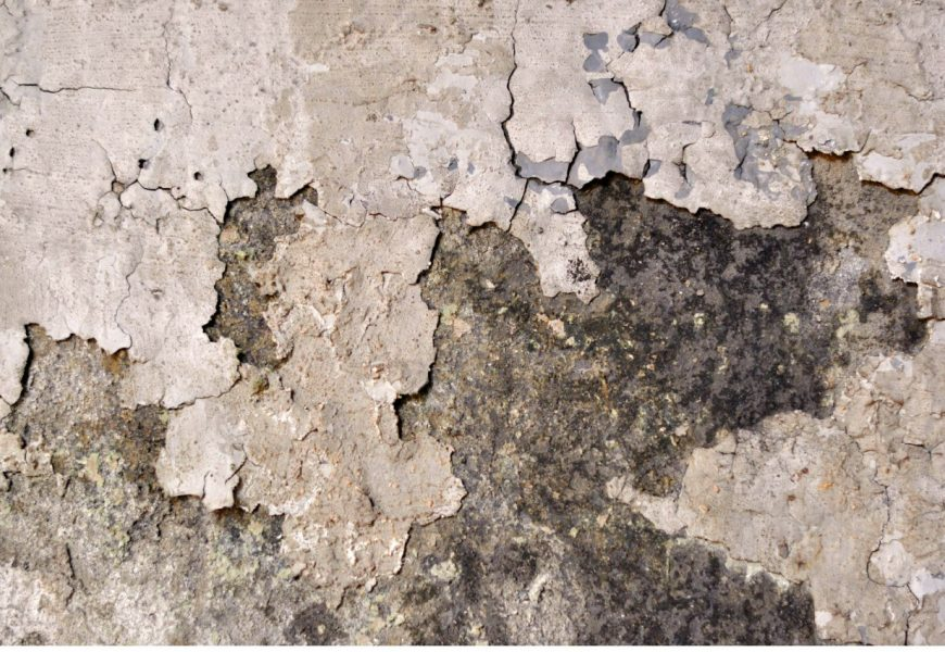 Thumbnail Immagine Locandina Non Rimpiango Nulla